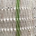 Yoruba Cushions with Green Stripe - picture 2